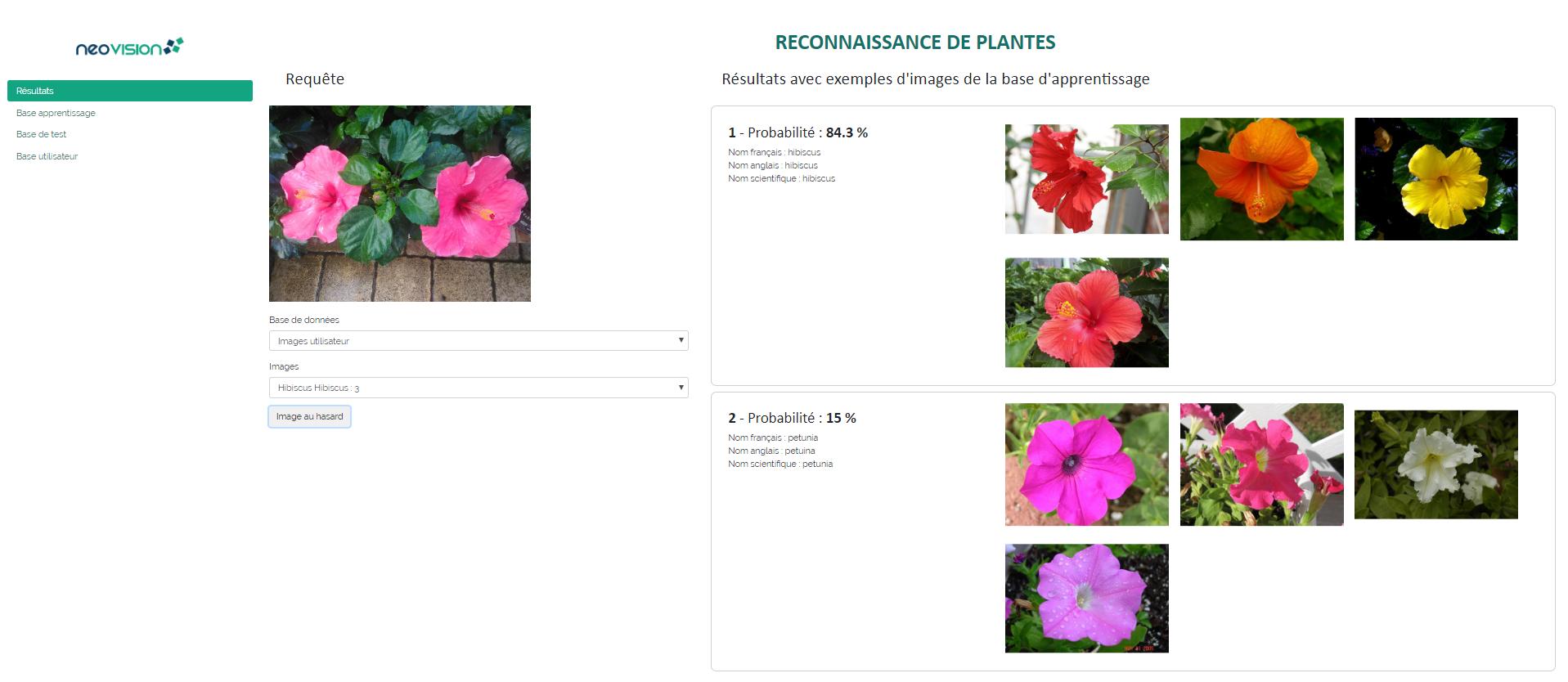 Reconnaissance de fleurs démo 1